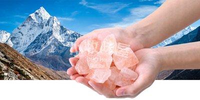 手拿著鹽喜瑪拉雅山鹽薄荷糖 - 檸檬味