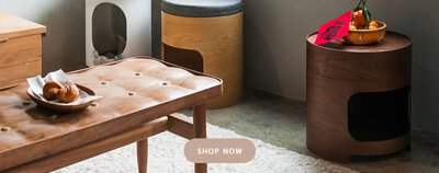 樂丘 | 滿座曲木椅凳