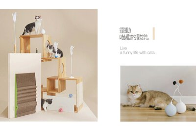 pidan 貓玩具 貓抓板