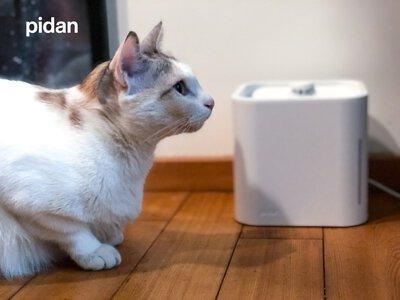 pidan 飲水機開箱