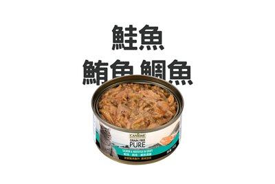 魚肉 貓罐頭