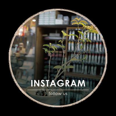 artfans-instagram