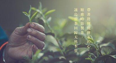 傳承烏龍茶的美好