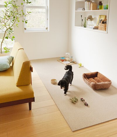 TOLI防滑地墊/地毯