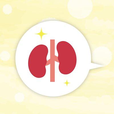 腎臟水分多寡與疾病的關係