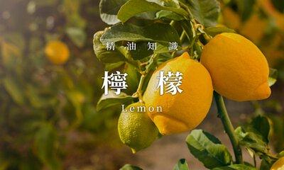 精油,檸檬,芳療