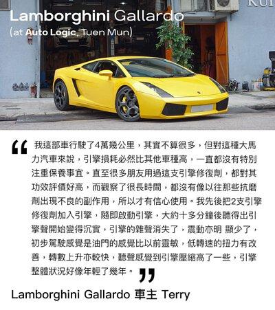 lamborghini gallardo engine restorer testimonial yellow