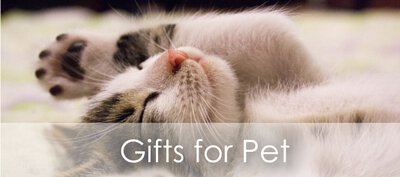 customized Gifts for Pet