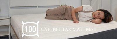 毛毛蟲床墊提供100晚試睡
