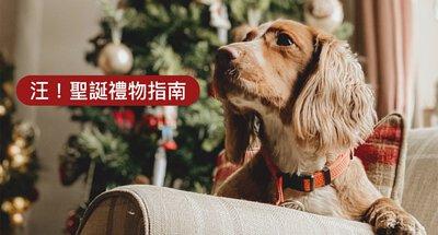 kou-christmas-gift