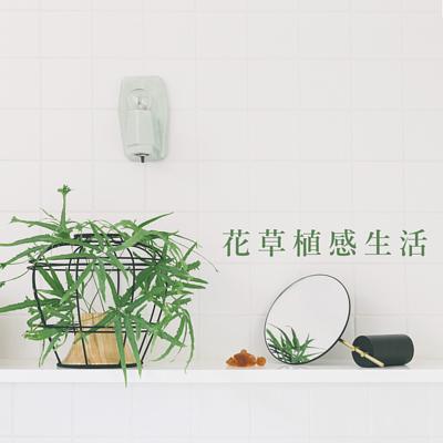 花器 / 花盆植物生活家飾