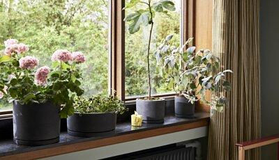 HAY Plant Pot 石樁花盆情境圖