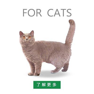 自然本色貓飼料,淚腺改善