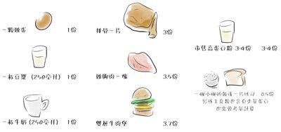 一顆雞蛋1份、一杯豆漿1份(250毫升)、一杯牛奶1份(250毫升)、排骨一片3份、雞胸肉一塊3.5份、雙層牛肉堡3.7份、市售高蛋白粉3~4份、一小碗的飯或一片吐司0.5份排骨一片3份、另外主食類也含有少量蛋白,也需要考量計算。