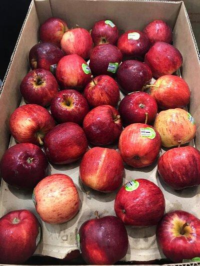 organic gala apple australia 澳洲有機蘋果