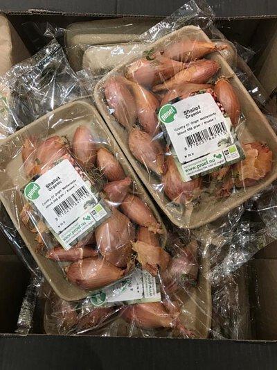 Organic Shallot from Holland 荷蘭有機乾蔥頭
