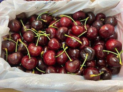 Cherries from Australia 澳洲車厘子