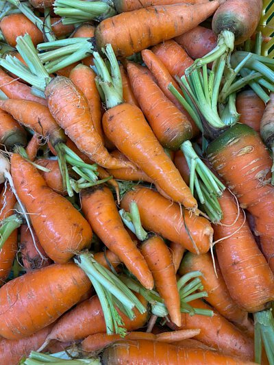 Organic Carrot from HK 香港有機紅蘿蔔