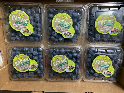 Organic Blueberries from Peru 有機藍莓