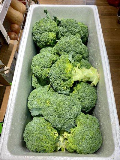 Broccoli from Australia 澳洲西蘭花