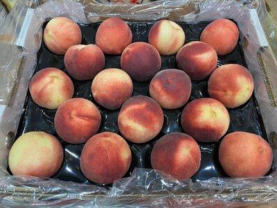 White Peach from Australia 澳洲白肉水蜜桃