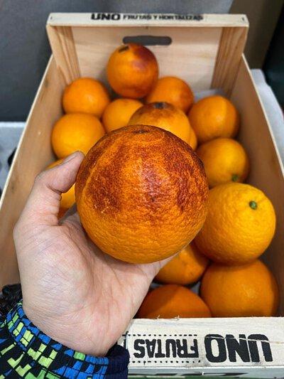 Blood Orange from Spain, 西班牙血橙