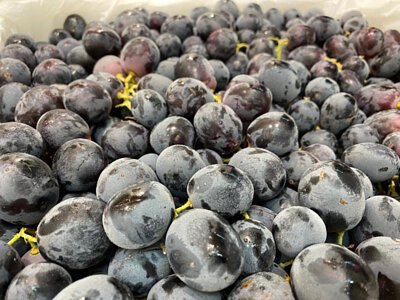 Premium Seedless Black Grapes Adora from Australia, 澳洲無核黑提子