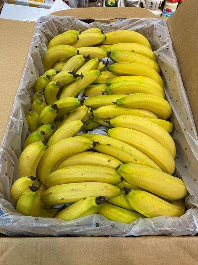 Organic Banana from Australia, 澳洲有機香蕉