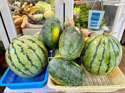 Organic Watermelon from HK, 香港有機西瓜
