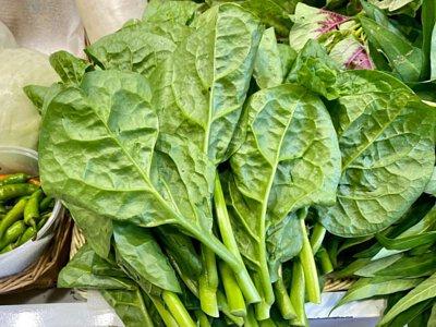 Organic Malabar Spinach from HK 香港有機潺菜