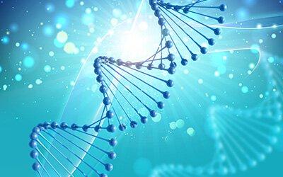 小分子藥物表皮生長因子