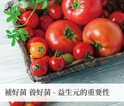 補好菌 養好菌─益生元的重要性