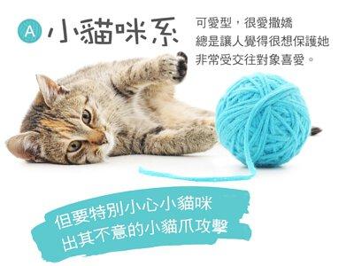 小貓咪系 可愛型,很愛撒嬌 總是讓人覺得很想保護她 非常受交往對象喜愛。