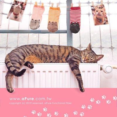 除臭襪除腳臭,貓襪除臭襪,貓系女子專科