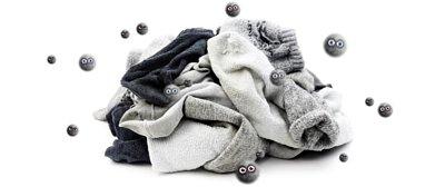 除腳臭除臭襪,想不到吧?細菌會隨著舊襪子 一直一直繁衍下去