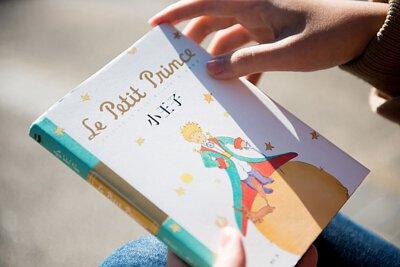 小王子 – Le Petit Prince