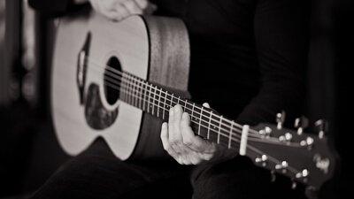 Furch Guitars將減少三分之二的碳足跡!