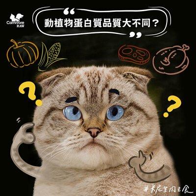 寵物營養:植物性與動物性蛋白質的差異