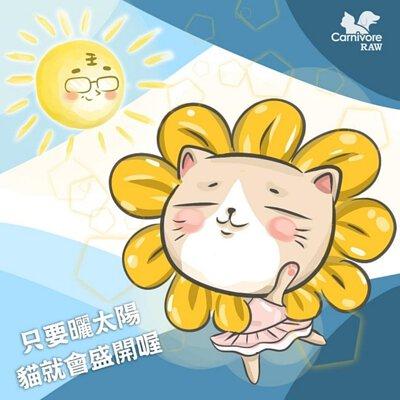 貓曬太陽,維生素D