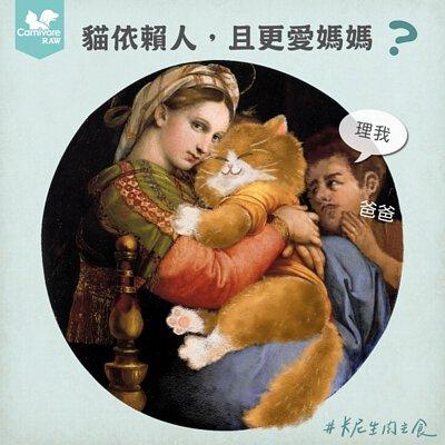 貓依賴人,貓喜歡女生,貓喜歡女聲