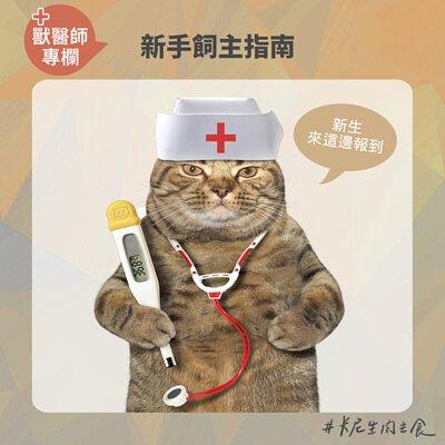 獸醫專欄,寵物絕育,醫療指南,預防針,驅蟲,結紮,異食癖,濕食,寄生蟲,佐劑,注射部位肉瘤