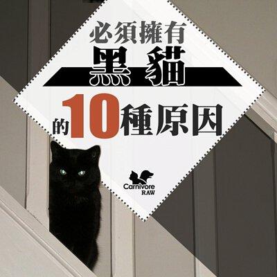 黑貓迷信,女巫,黑貓
