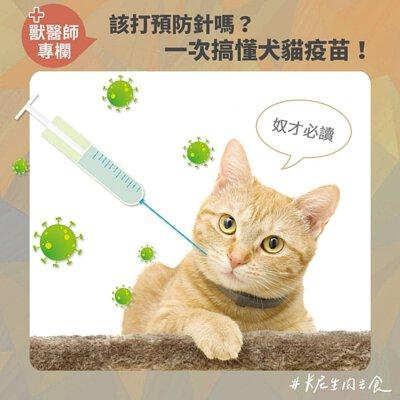 預防針,預防注射,VAS,佐劑,狂犬病,三合一,五合一,十合一,疫苗,核心疫苗,非核心疫苗,貓白血病,貓愛滋,萊姆病,支氣管炎,犬瘟,貓小病毒,貓皰疹,卡里西病毒,死毒疫苗,減毒疫苗,活毒疫苗,不活化疫苗