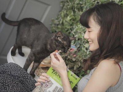 貓奴給貓咪吃卡尼零食