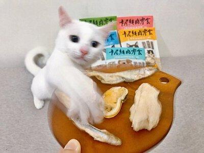 貓咪想吃卡尼零食