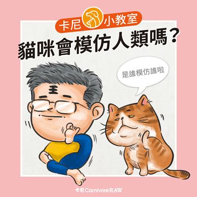 貓咪會模仿人類的動作舉止嗎?
