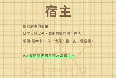 宿主標題描述投影片