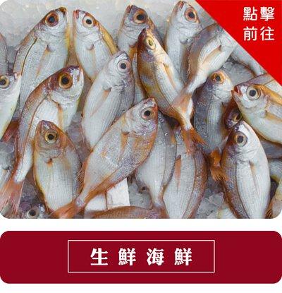 生鮮海鮮專區