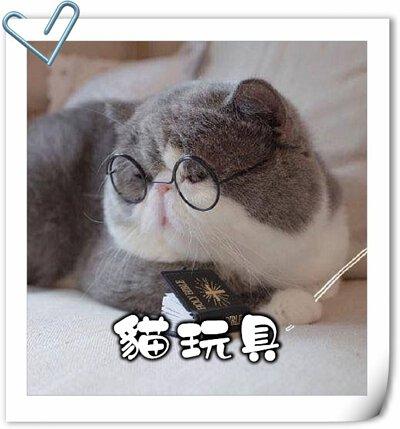 貓,貓咪,寵物用品,貓砂,貓糧,貓玩具,貓清潔,貓罐頭,貓零食,貓濕糧,乾糧,天然貓糧,脫水貓糧,貓小食,貓玩具,feline,canine,cat,pet,online pet,pet shop,cat food,cat toy