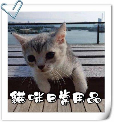 貓,貓咪,寵物用品,貓砂,貓糧,貓玩具,貓清潔,貓罐頭,貓零食,貓濕糧,乾糧,天然貓糧,脫水貓糧,貓小食,貓玩具,feline,canine,cat,pet,online pet,pet shop,cat food,cat daily care